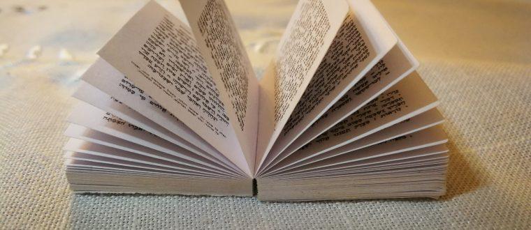5 ספרי ישראל ויהדות שכל אחד צריך לקרוא